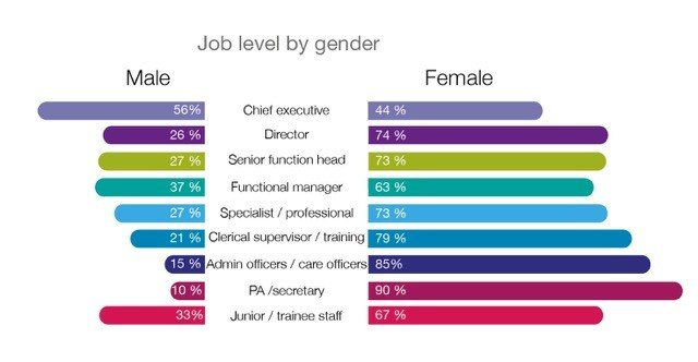 State Of The Sector Profiles The Vcse Workforce Nicva