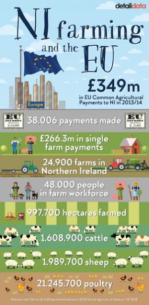 CAP Payments Infographic