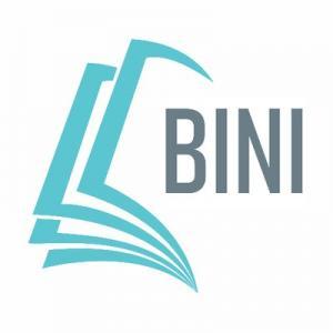 Basic Income NI logo